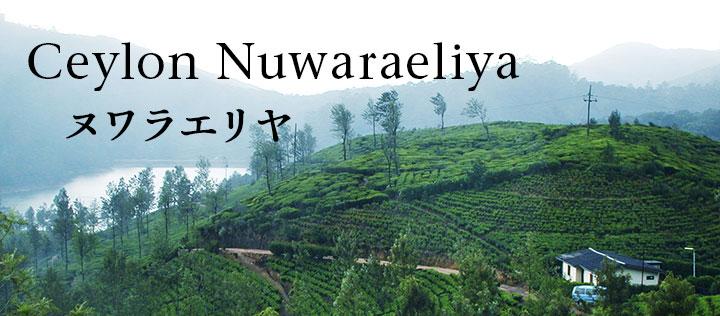 ヌワラエリヤ